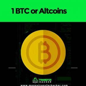 10 BTC or Altcoins